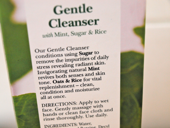 Gentle cleanser BeFine